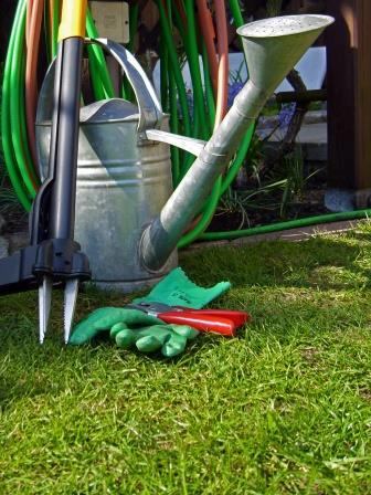 checkliste f r ihre zierpflanzen im septembergartengarten pflanzen. Black Bedroom Furniture Sets. Home Design Ideas
