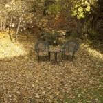 Novembergarten_Laub
