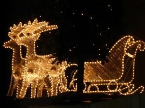 Weihnachtsbeleuchtung lichterglanz in ihrem gartengarten - Weihnachtsbeleuchtung garten ...