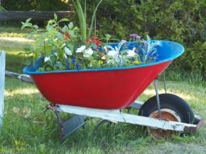 pflanzen und ideen f r einen kleinen garten garten pflanzen. Black Bedroom Furniture Sets. Home Design Ideas