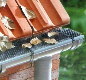 Ein Dachrinnenschutzsystem hat seine Vorteile