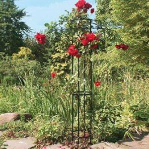 Rankschirm für Pflanzen