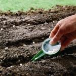 Sähilfe oder Saatstock im Einsatz