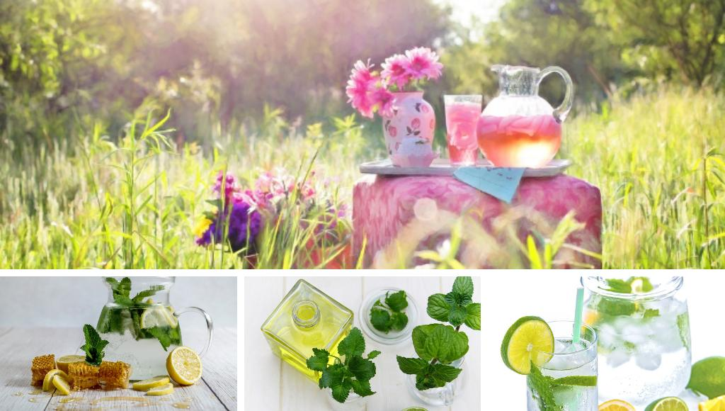 Fruchtige Kraeuter Drinks