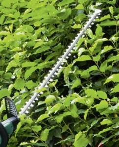 Schwert einer Heckenschere
