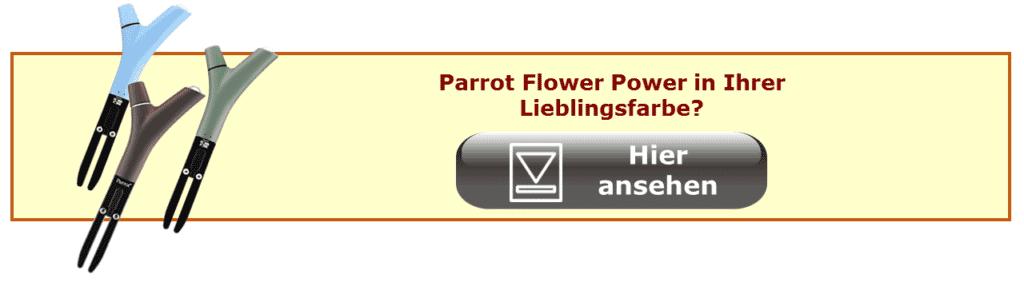 Link zu Parrot