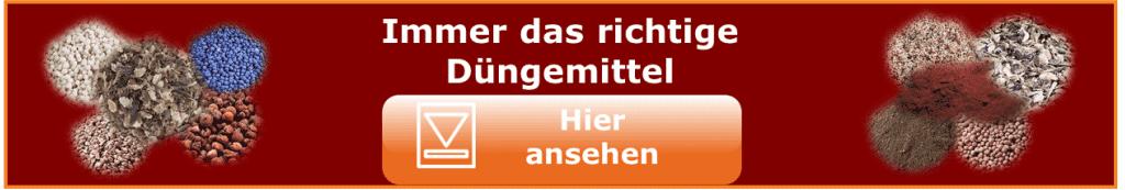 Bio Dünger