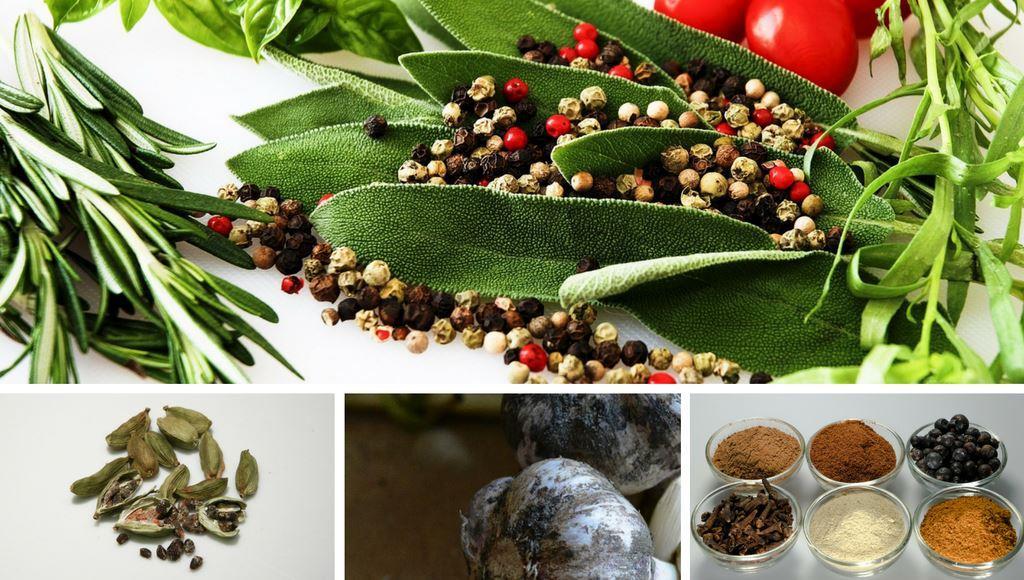 Kräuter Oder Gewürze? - Aus Eigenem Anbau | Garten Pflanzen Pflanzen Kultivieren Aromatische Gewurze Garten