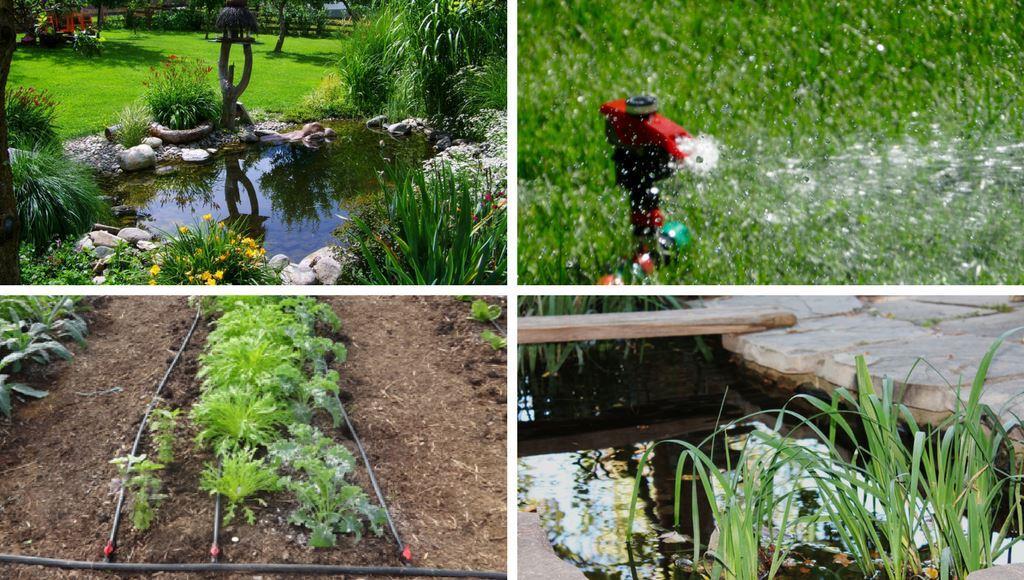 Bodenverbesserung Garten Mittel Tipps ? Sarakane.info Brombeeren Pflanzen Und Schneiden Pflegetipps Fur Hobby Gartner