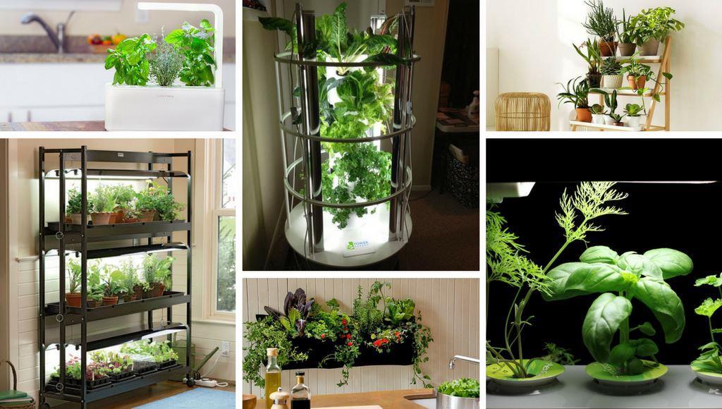 ... Smart Garden, Smarter Kräutergarten Im Haus, Smarter Garten Im Haus,  Vertikaler Indoor Garten, Vertikales Farmen In Der Küche, Im Wohnbereich  Oder Wo ...
