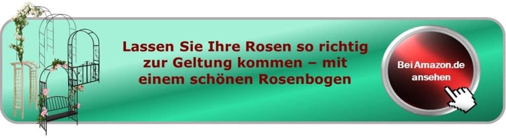 Button Rosen
