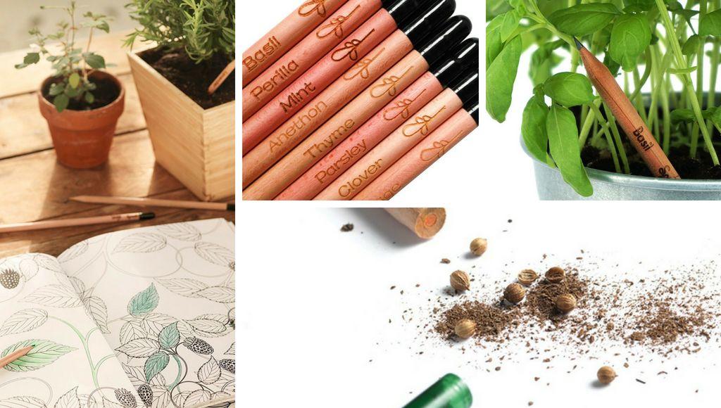 Bleistift pflanzen