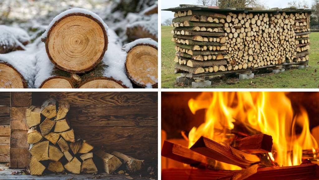 Holz Beitrag