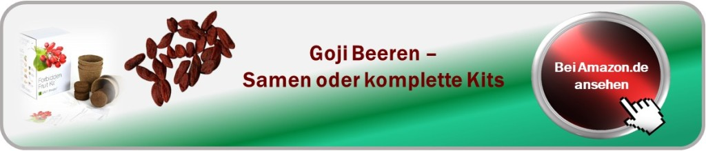 Goji Beeren Samen